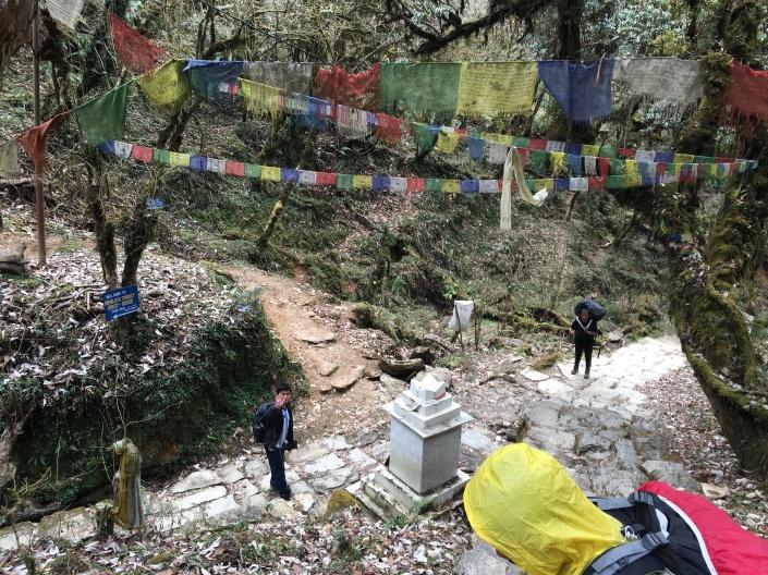 Annapurna Trekking Regions