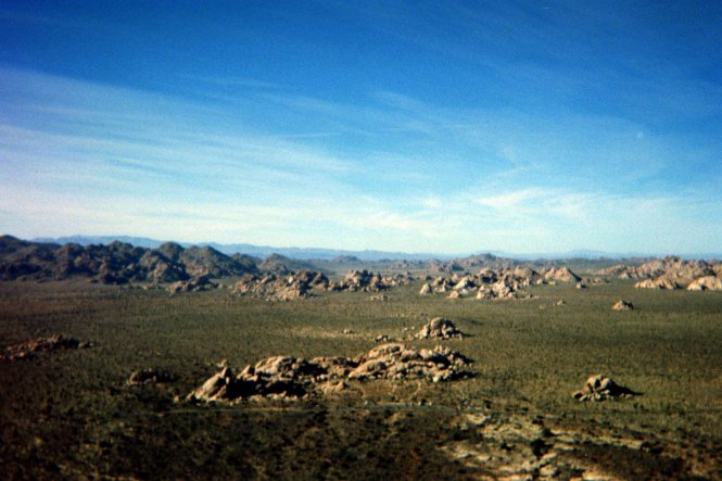 Joshua Tree National Park Film Picture